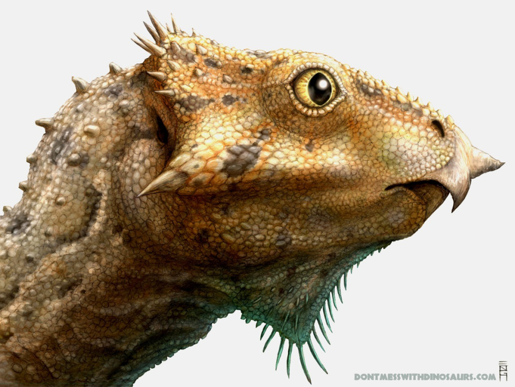 Aquilops americanus a new species of basal ceratopsian dinosaur.