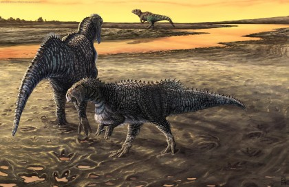 Extravagant Iguanodonts and distant large Theropod