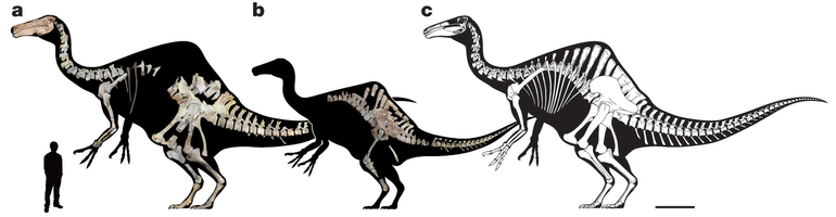 Deinocheirus figure from Natrure